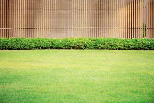 Trawnik w ogrodzie.