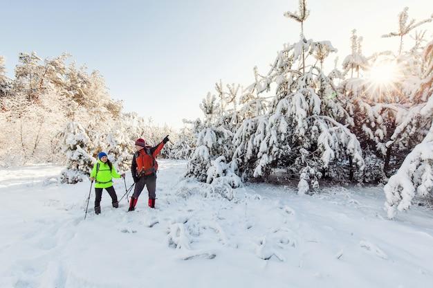 Trekkerzy na ścieżce do schronienia w parku przyrodniczym