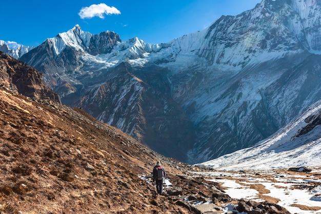 Trekking w himalajach nepalu