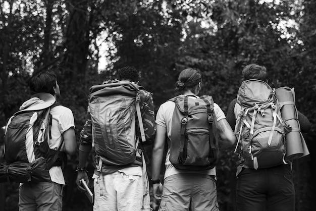 Trekking w lesie