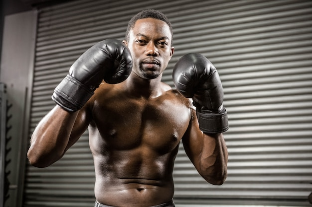 Trening bokserów bez koszulki na siłowni crossfit