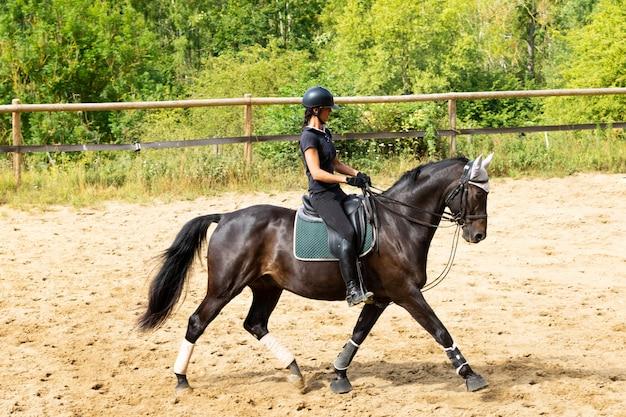 Trening jeźdźca i konia laurowego w ujeżdżeniu