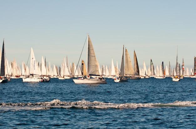 Trieste, barcolana 2009 - regaty w trieście
