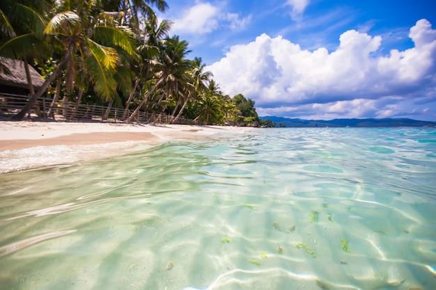 Tropikalna idealna plaża z zielonymi palmami, białym piaskiem i turkusową wodą