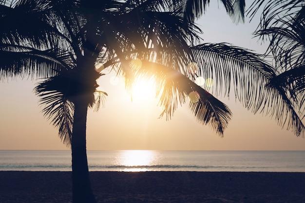 Tropikalna natura czysta plaża zachód słońca niebo czas z światło słoneczne tło.