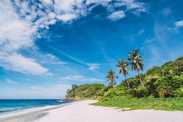 Tropikalna, odosobniona, piaszczysta plaża z palmami kokosowymi i błękitnym niebem z ruchomymi białymi chmurami powyżej.