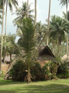 Tropikalna plaża hut