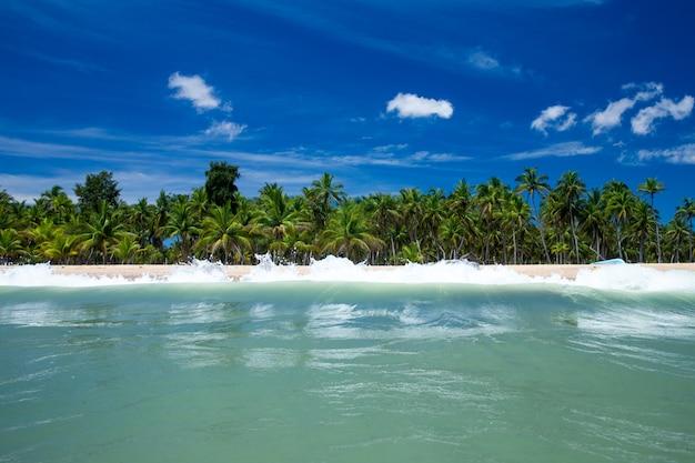 Tropikalna plaża na sri lance. letnie wakacje i wakacje koncepcja turystyki.