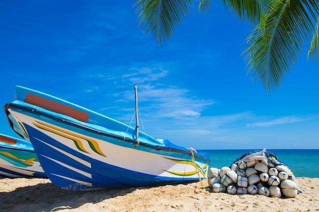 Tropikalna plaża na sri lance