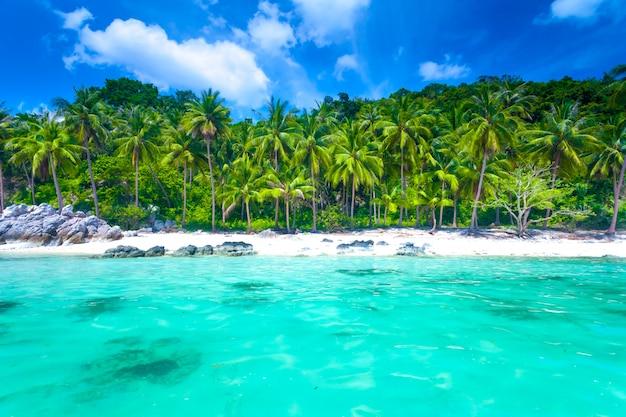 Tropikalna plaża na wyspie
