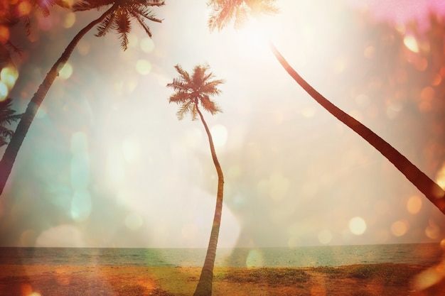 Tropikalna plaża serenity, filtr instagram