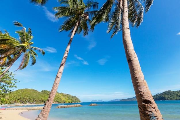 Tropikalna plaża spokoju