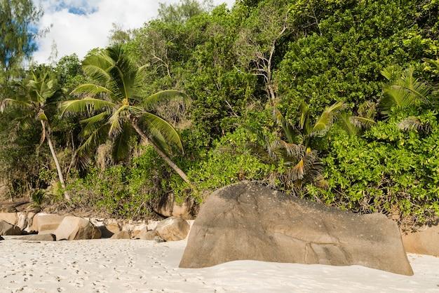 Tropikalna plaża z dużym kamieniem