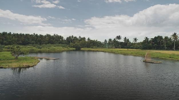 Tropikalna przyroda z anteną jeziora