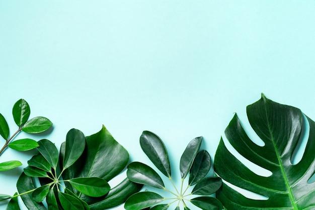 Tropikalna rama liść palmy na niebieskiej powierzchni z miejsca na kopię