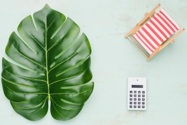 Tropikalna roślina i kalkulator