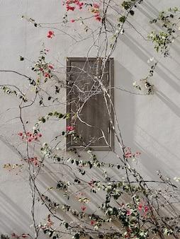 Tropikalna roślina z czerwonymi kwiatami na beżowej ścianie budynku domu
