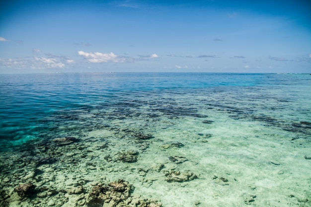 Tropikalna woda morska na malediwach