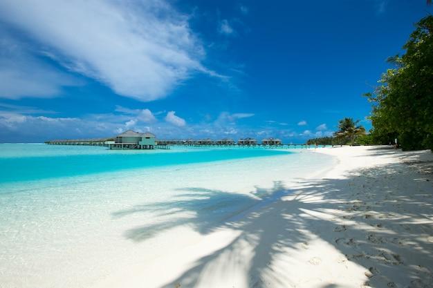 Tropikalna wyspa malediwów z białą piaszczystą plażą i morzem