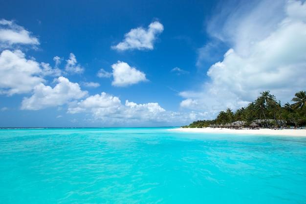 Tropikalna wyspa malediwy z białą piaszczystą plażą i morzem