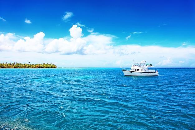 Tropikalna wyspa z palmami i panoramą plaży jako tło
