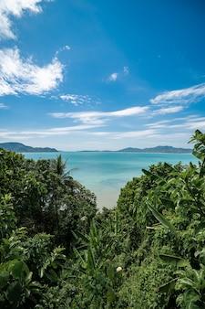 Tropikalna wyspa z zielenią drzew na pierwszym planie i plaży, phuket, tajlandia.