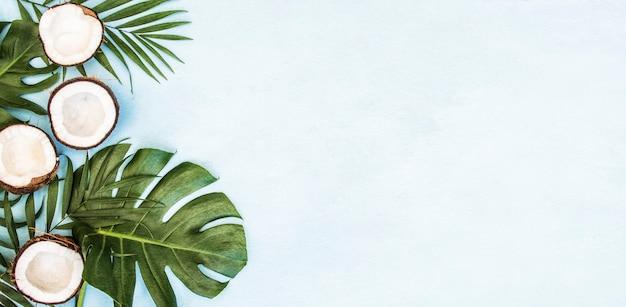 Tropikalna zieleń liści palmowych liści i kokosów