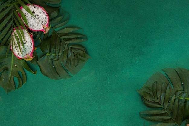 Tropikalna zieleń opuszcza palmowego tło