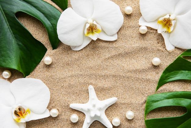 Tropikalne liście monstera i kwiaty orchidei