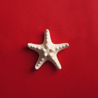 Tropikalne mieszkanie leżało z rozgwiazdą na czerwono