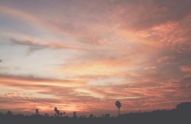 Tropikalne palmy kokosowe na zachód słońca niebo rozbłysk i bokeh natura kolorowy kopia przestrzeń lato koncepcja tło.