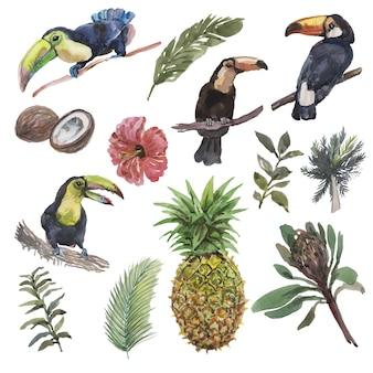 Tropikalne ptaki, liście, owoce i kwiaty tukan