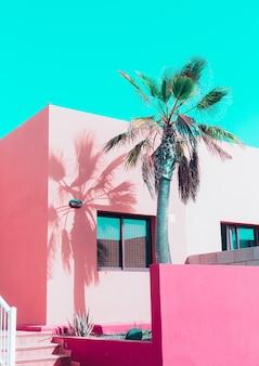 Tropikalne różowe wibracje. wyspy kanaryjskie z palmami waniliowymi. projekt w pastelowych kolorach