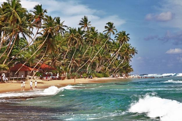 Tropikalne wakacje na sri lance. piękna plaża palmowa w hikkaduva