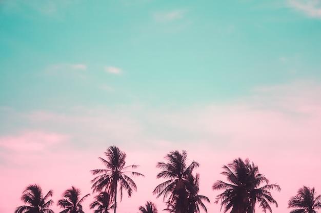 Tropikalni palmowi kokosowi drzewa na zmierzchu nieba racy i bokeh naturze.