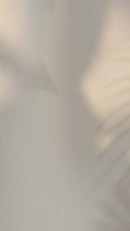 Tropikalny cień liści na ścianie
