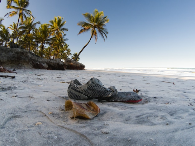 Tropikalny krajobraz z plażą z palmami kokosowymi i śmieciami na piasku.