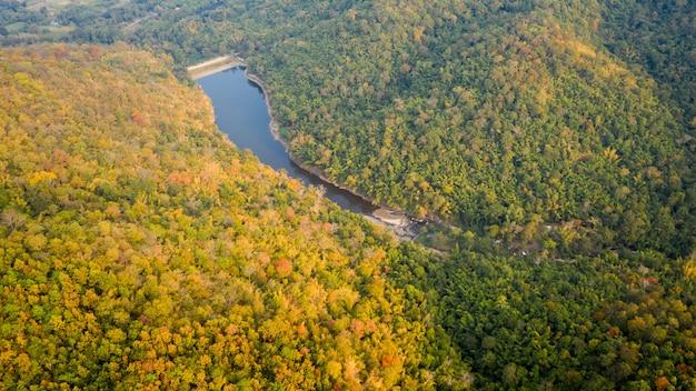 Tropikalny las tropikalny w jesień kolorach i naturalny tamy sezonu widok z lotu ptaka