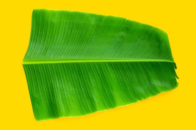 Tropikalny liść bananowca na żółtym tle.