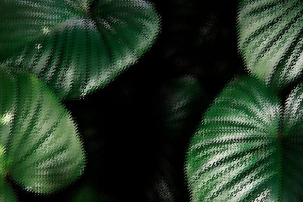 Tropikalny liść tło