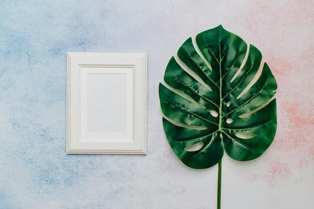Tropikalny liść z białą ramą na tekst.