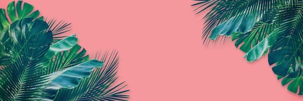 Tropikalny mieszany zielony liść na różowym tle papieru. widok z góry na płasko świeckich z miejsca kopiowania tekstu.