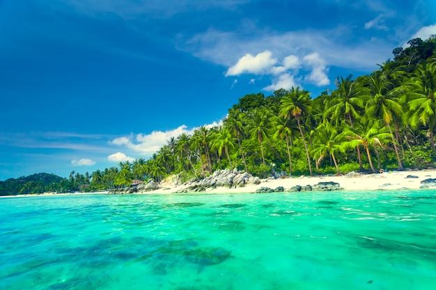 Tropikalny morze i niebieskie niebo w koh samui, tajlandia