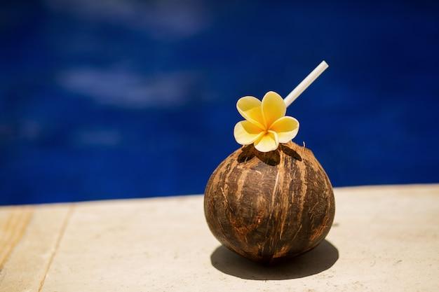 Tropikalny napój kokosowy z żółtym kwiatkiem na brzegu basenu. relaks w hotelu