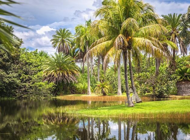 Tropikalny ogród botaniczny fairchild, miami, floryda, usa