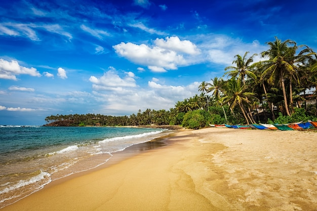 Tropikalny raj idylliczna plaża mirissa sri lanka