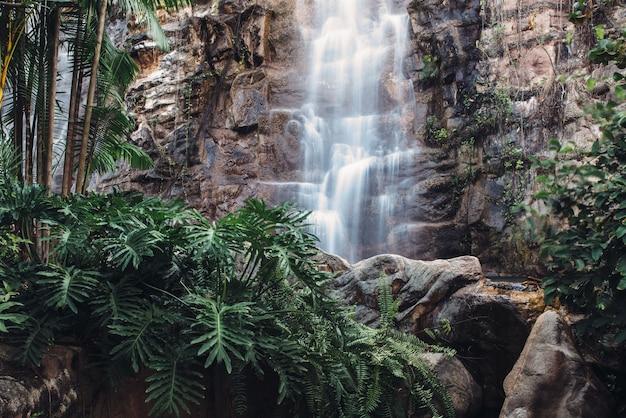 Tropikalny wodospad w lesie tropikalnym.