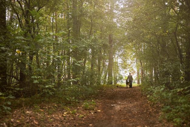 Troskliwy właściciel i jego grzeczny pies spacerujący na końcu leśnej ścieżki