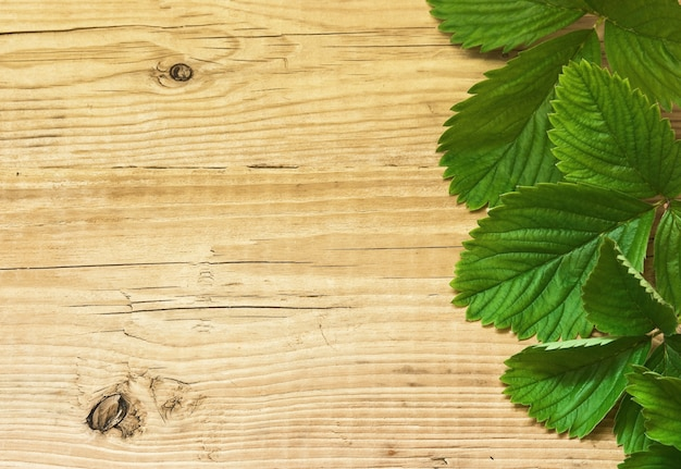 Truskawki liście na drewnianym tle