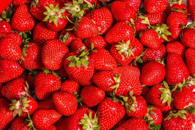 Truskawkowe tło. świeże, dojrzałe owoce, letnie jedzenie tło. modne twarde światło, ciemny cień. jasny wzór, tekstura lub tło
